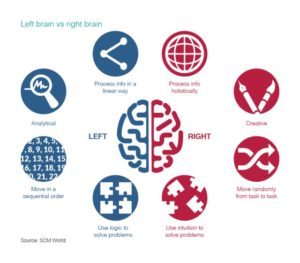 right and left brains in supply chain