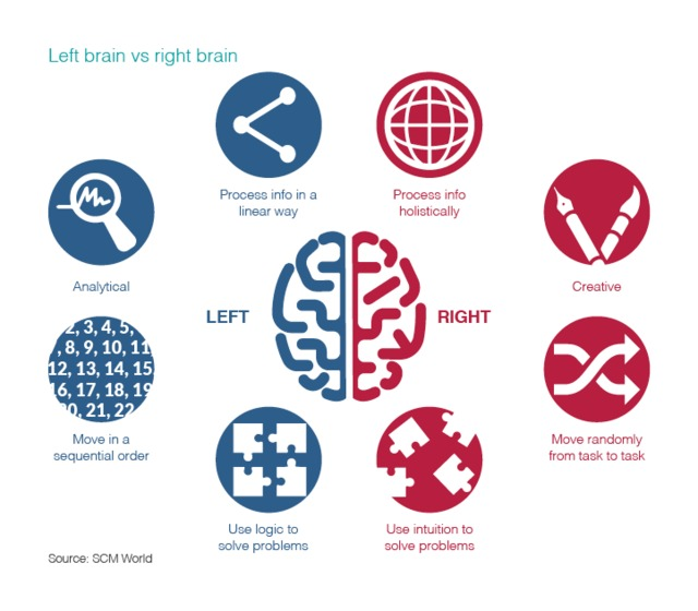right and left brains in the supply chain